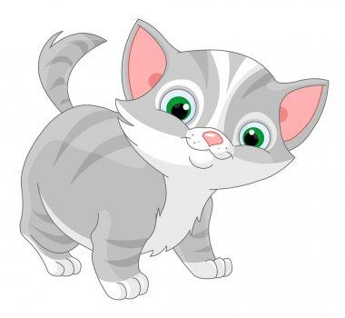 Striped kitten on white