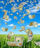 peníze na obloze