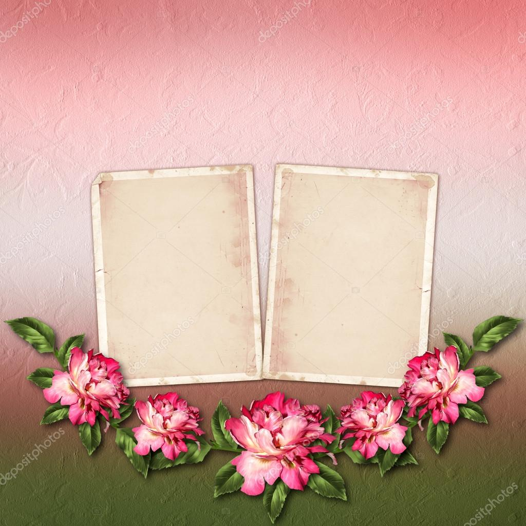 Beautiful painted rose with frames for congratulations or invita beautiful painted rose with frames for congratulations or invita stock photo izmirmasajfo