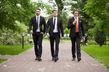Three young men in elegant business suits