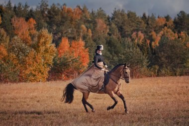 Horse-hunting with ladies in riding habit