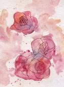 Abstraktní růže akvarelu pozadí.