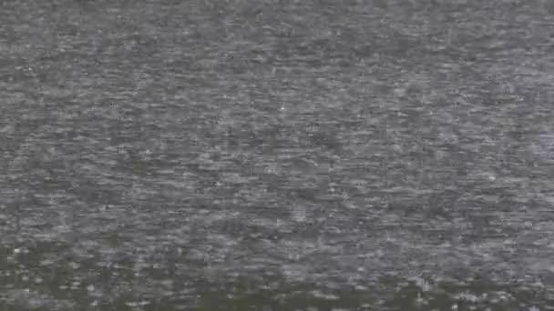 Těžké dešťové kapky na povrchu vody