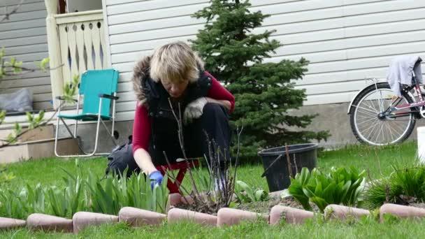 junge Gärtnerin jätet die grünen Erbsen