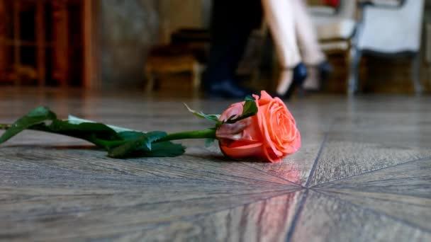 Rudá růže na podlaze na tančící lidé pozadí