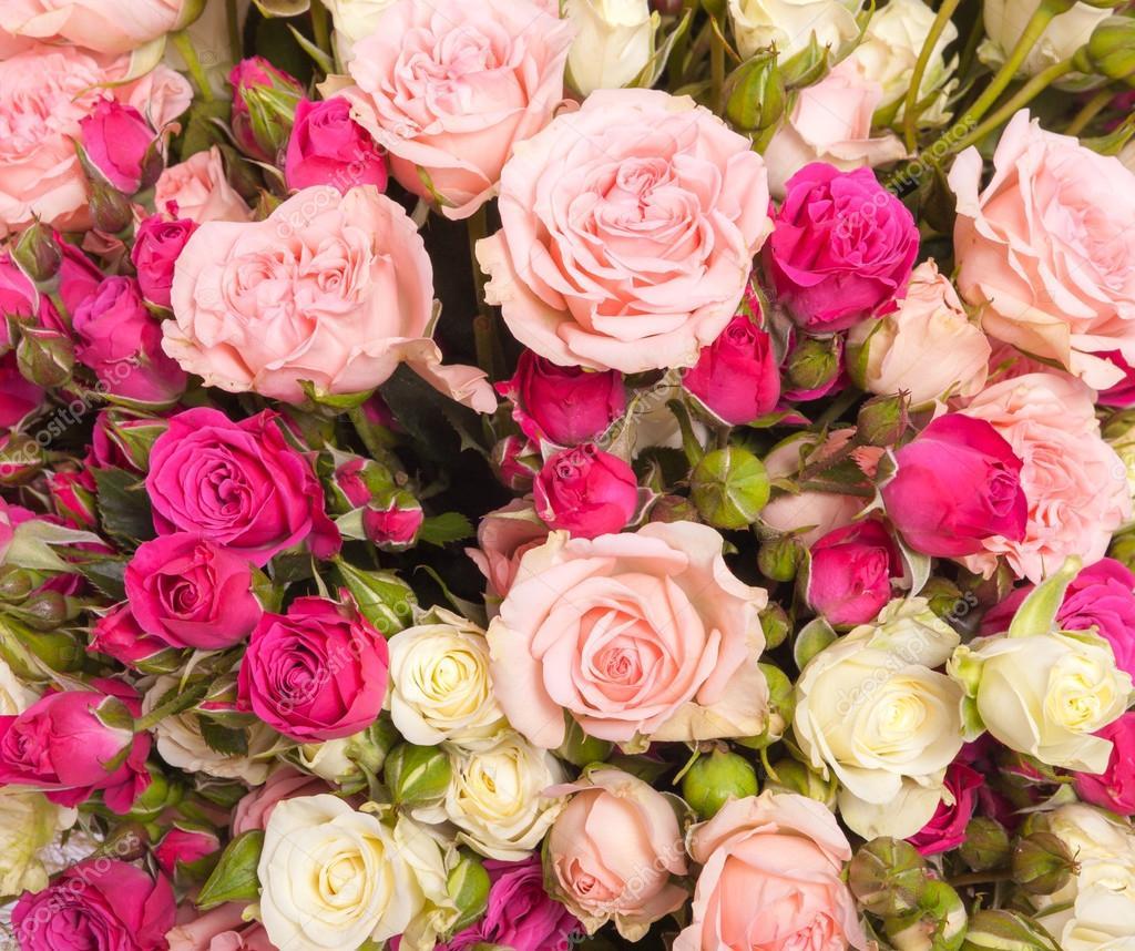 Bouquet De Roses Multicolore Photographie Gilmanshin C 62029813