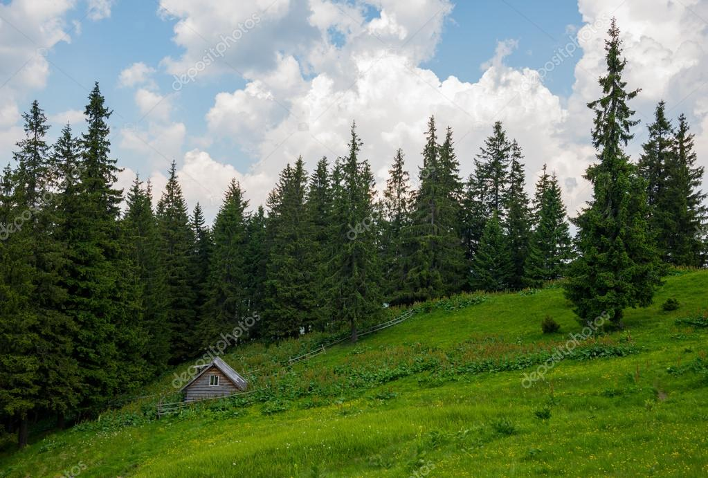 Carpathians mountains, Ukraine