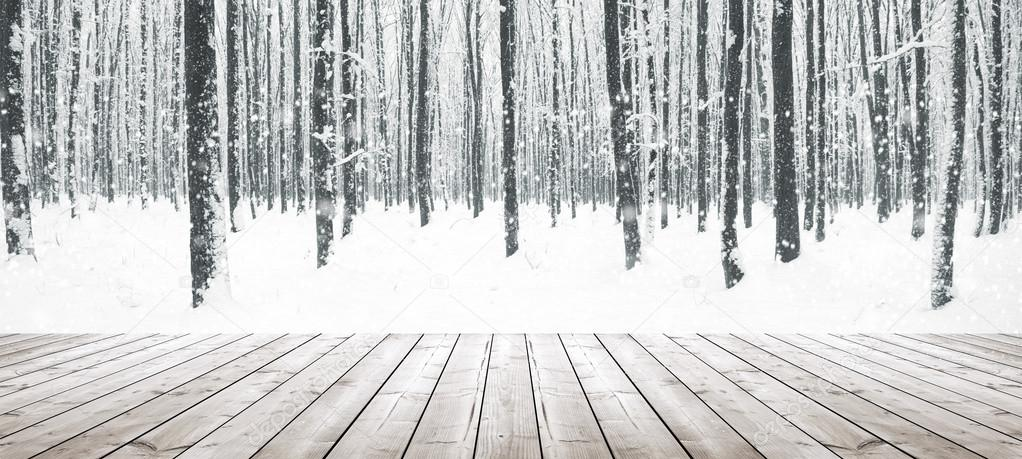 Winter forest and wooden planks