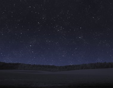 Field, forest and night sky