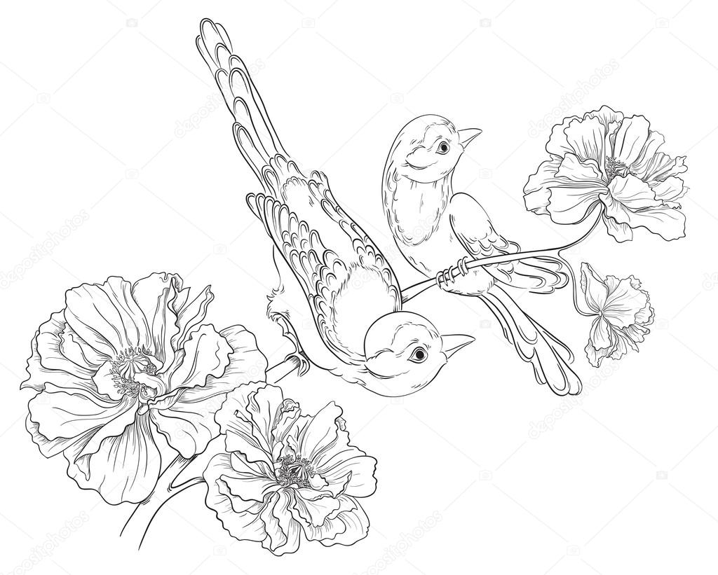 Two birds sitting on blooming roses. Flower background. Vector hand drawing
