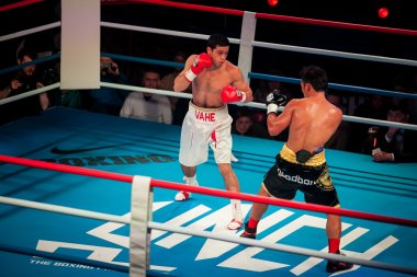 WBC EPBC boxing championship in Moscow