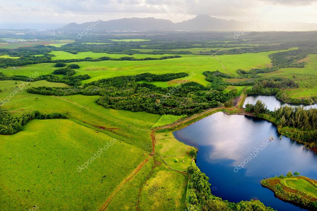 Spectacular Kauai jungles