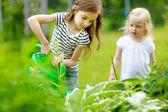Fotografie Mädchen, die Pflanzen und Blumen gießen