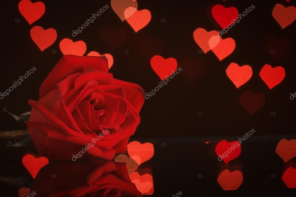 fondo rosas y corazones foto de stock