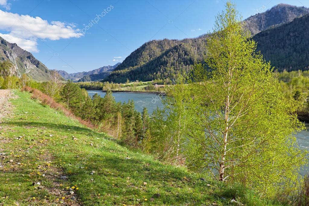 Altai river Katun near mountain village Chemal, Russia