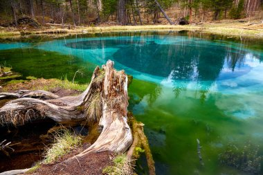 So cold blue geyser lake in Altay mountains