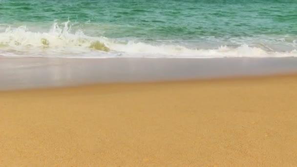 Tropical beach és a hullámok