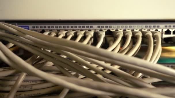 Netzwerkserver mit Kabeln