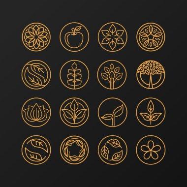 Vector abstract emblem - outline monogram - nature symbols - concept for organic shop - set of abstract design element- logo design template stock vector