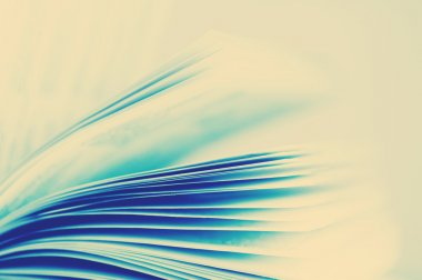 Pages of a book, close up.