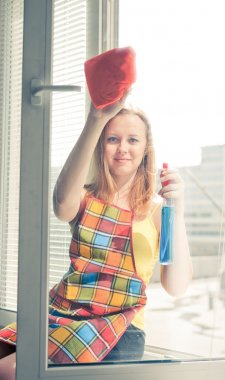 woman housewife washes a window
