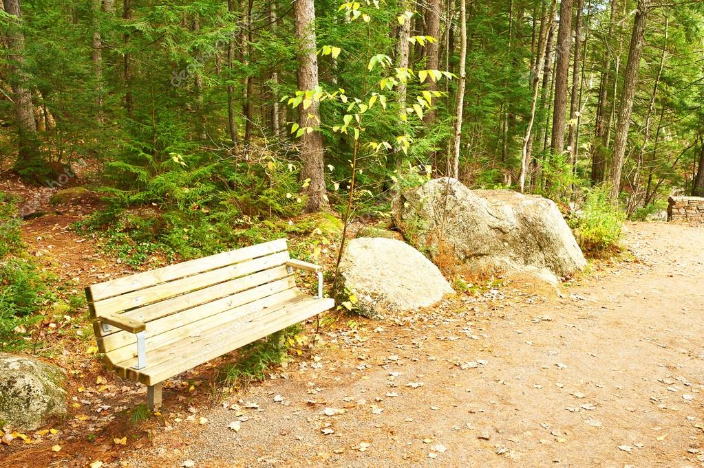 Autumn scene with wooden bench