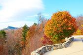 Paesaggio di scena di autunno
