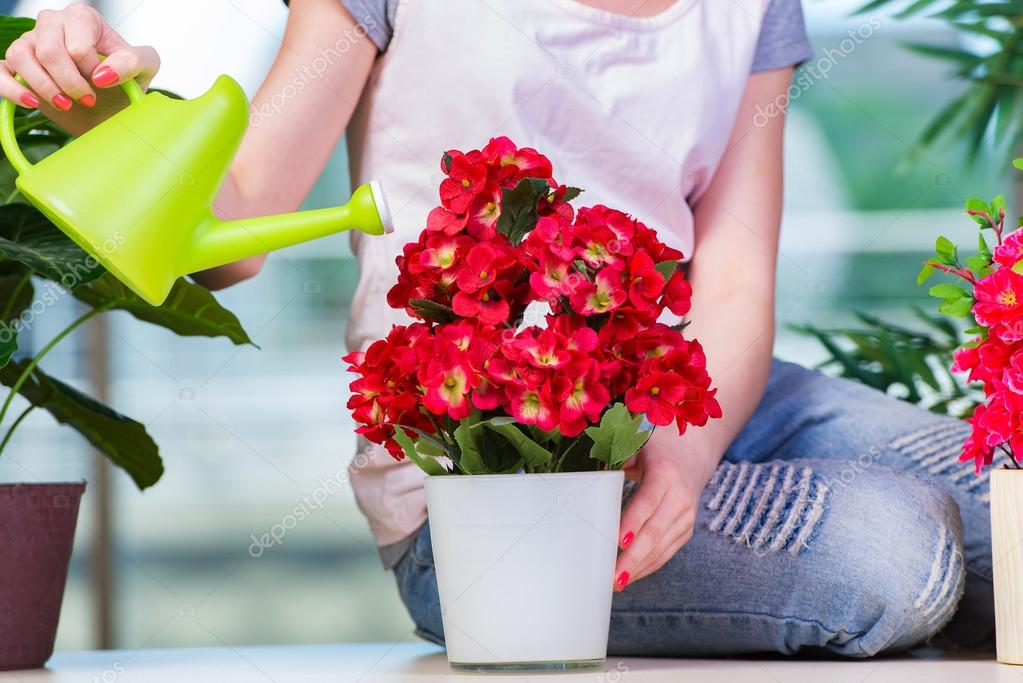 Woman taking care of home plants