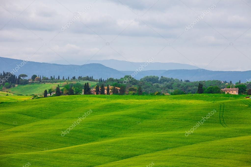 Фотообои Тоскана, сельский пейзаж. Сельской ферме, кипарисы деревья, зеленые поля, солнечный свет и облака.