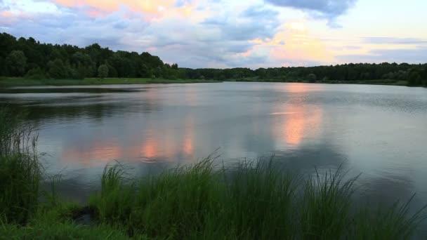 Jezero a les. Přírodní složení