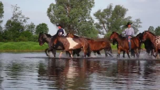 Dvou kovbojů na koních