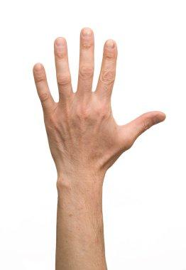 arm, hand
