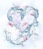Fotografie Srdce z vody splash s květy