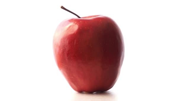 Single fresh juicy red apple