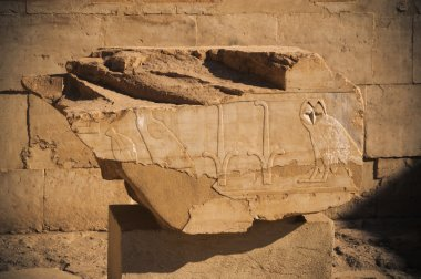 Old egypt hieroglyphs in Luxor