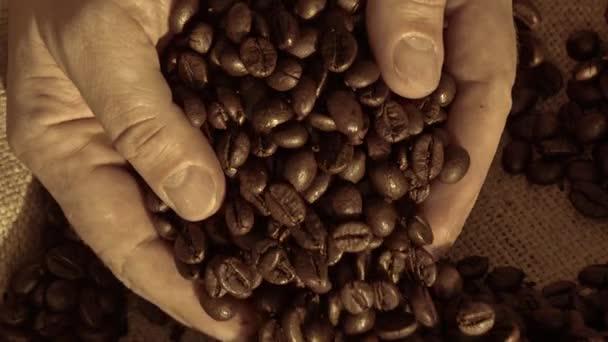 Hände, die Kaffeebohnen nehmen
