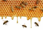 tok vonného medu