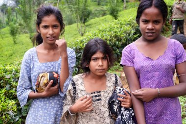 A group of young children of tea plantation
