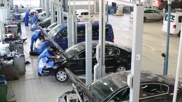 Muži opravovat auta
