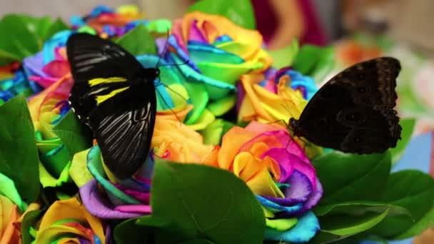 Two big butterflies sit on bouquet