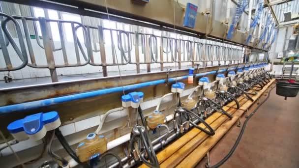 Die Ausstattung mit einem Melkmaschinen auf Milchviehbetrieb.