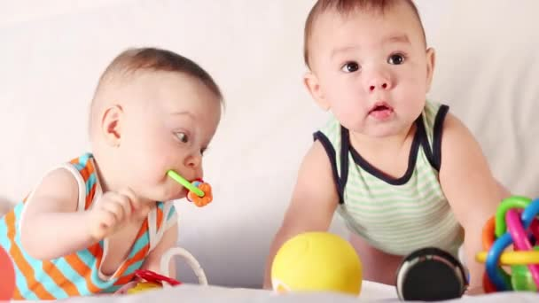 Two cute babies playing together with toys in the studio