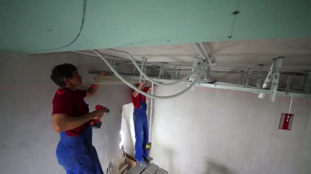 Two workers with building level measure setting ceiling profile