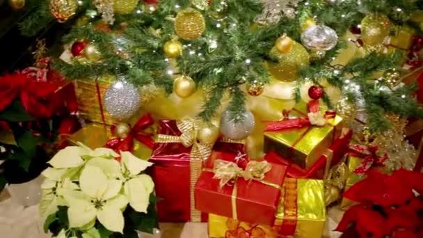 vánoční dárky pod vánoční stromeček