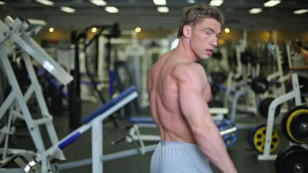 Atlet zobrazeno svaly ramen
