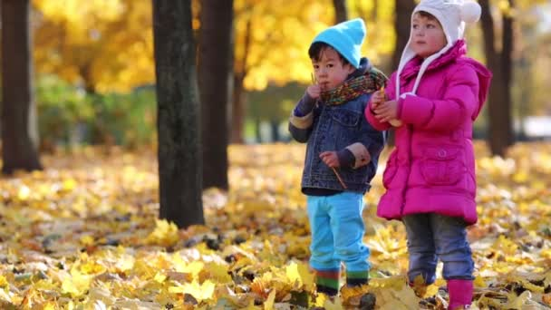 Cute little girl and boy in park