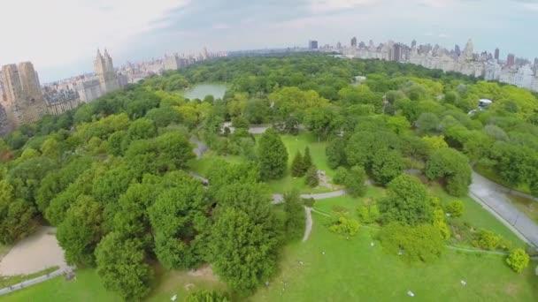 Central parku v new Yorku