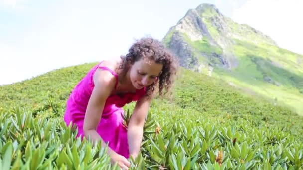 Happy woman in mountains