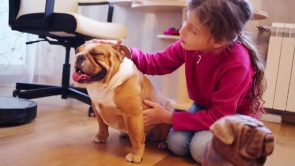 Pretty girl strokes English bulldog