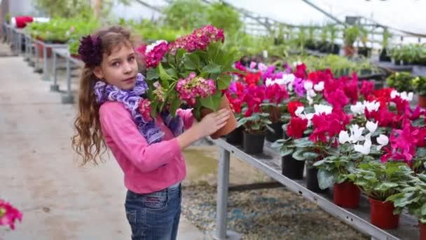 Beautiful girl replace flower pot